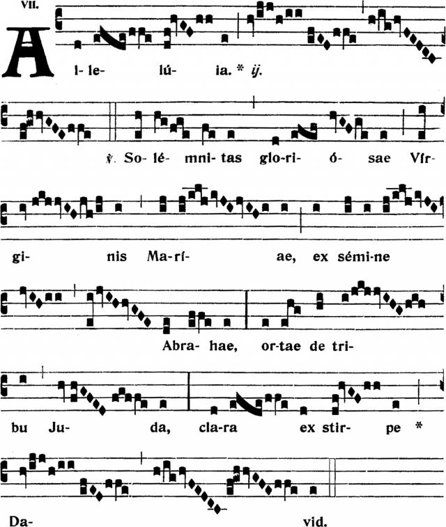 Alleluia - Solemnitas gloriosæ Virginis Mariæ- ton 7