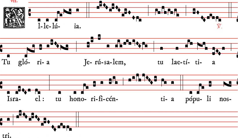 Alleluia - Tu gloria Jerusalem - ton 7
