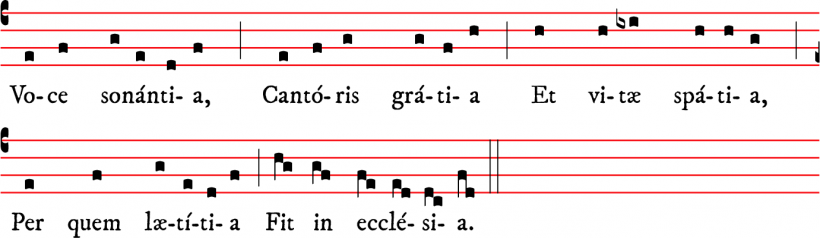 Annus novus in gaudio - versus pour le nouvel an